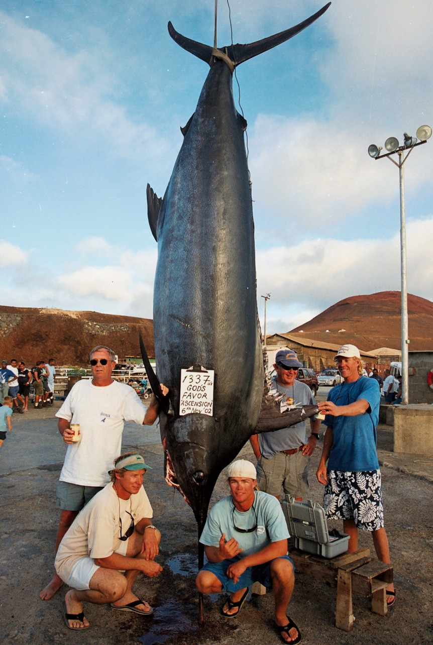 "A 1337# Atlantic Blue Marlin dubbed, ""Monster."" With angler Bill Degraw."